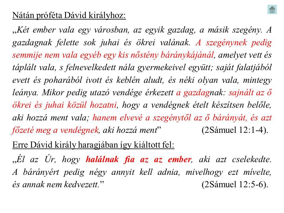 Nátán próféta Dávid királyhoz: