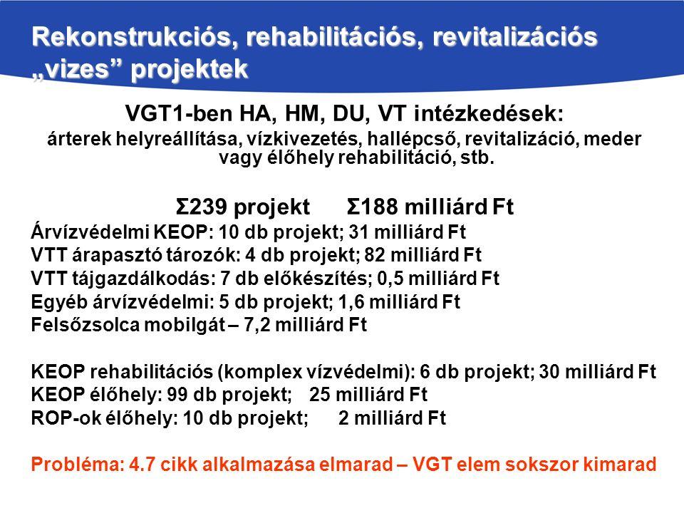 "Rekonstrukciós, rehabilitációs, revitalizációs ""vizes projektek"