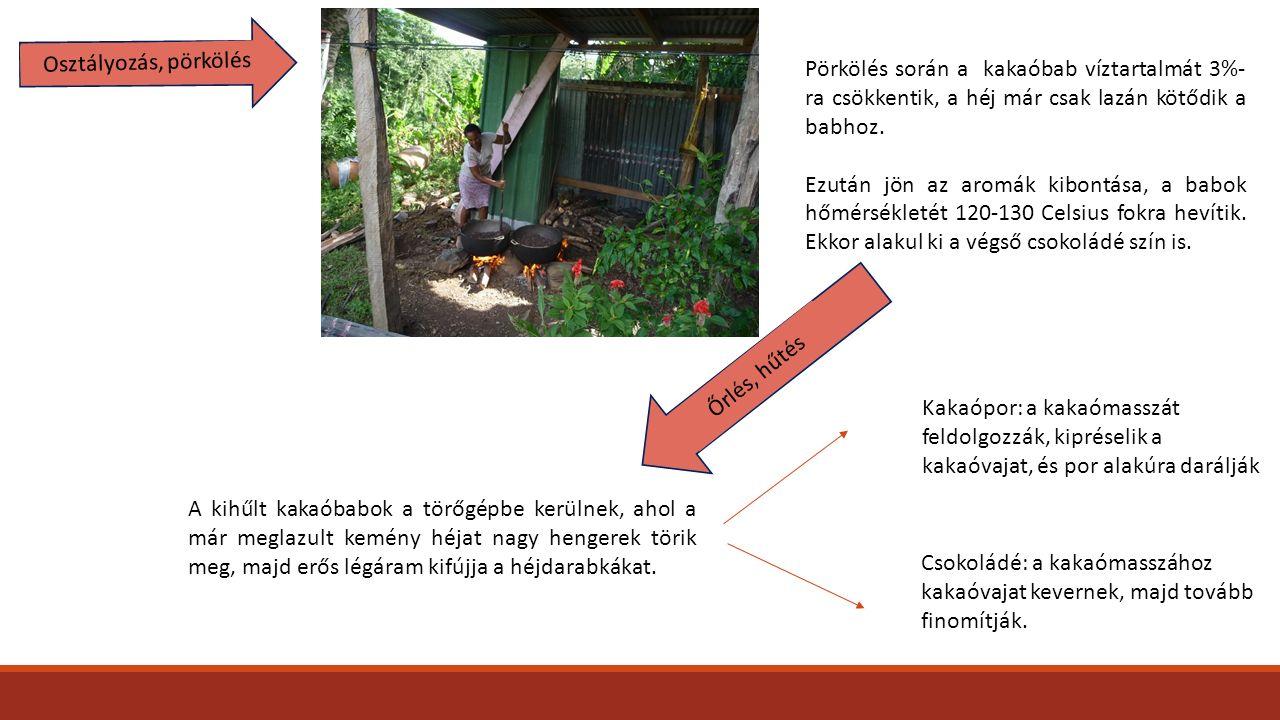 Osztályozás, pörkölés Pörkölés során a kakaóbab víztartalmát 3%-ra csökkentik, a héj már csak lazán kötődik a babhoz.