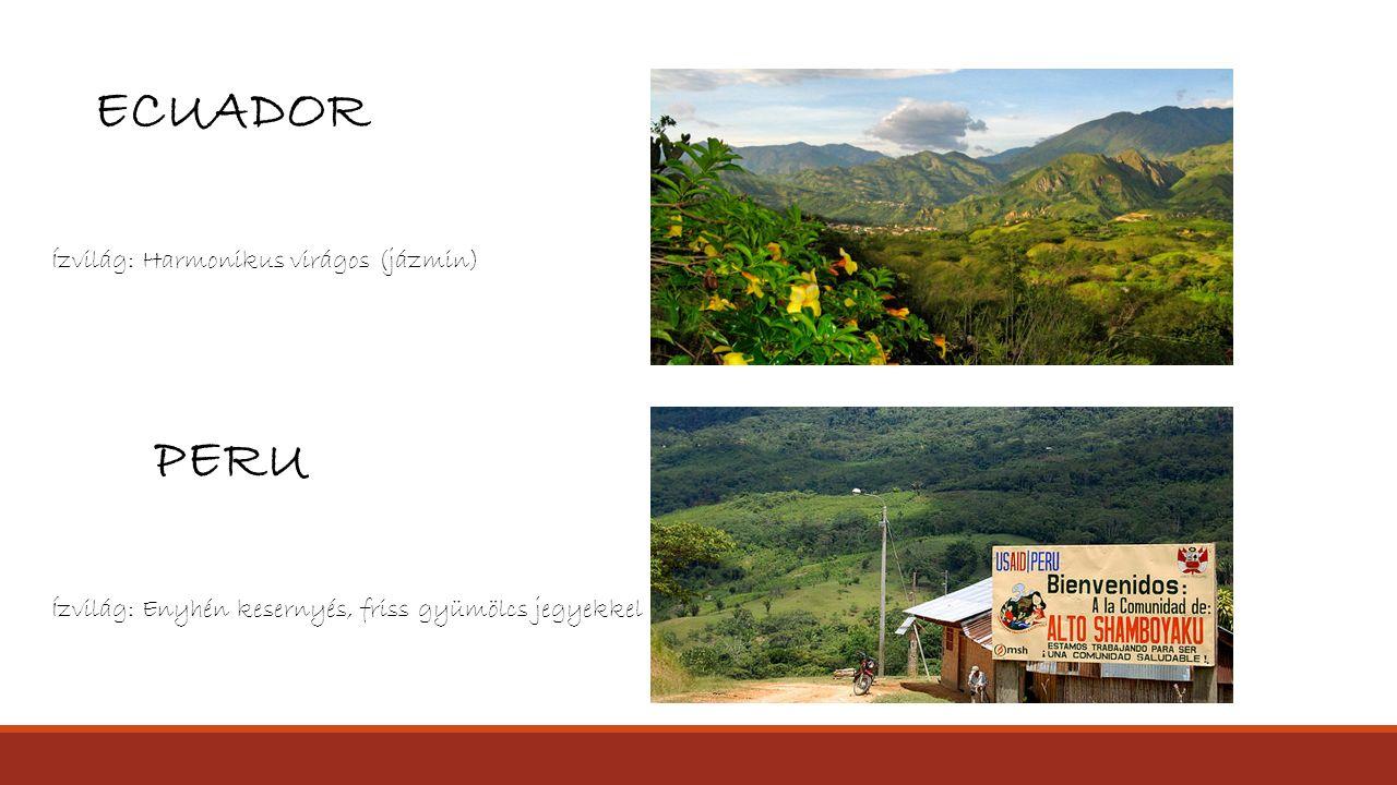ECUADOR PERU Ízvilág: Harmonikus virágos (jázmin)