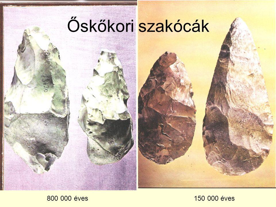 Őskőkori szakócák 800 000 éves 150 000 éves