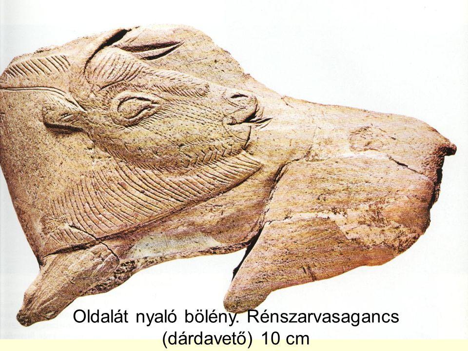 Oldalát nyaló bölény. Rénszarvasagancs (dárdavető) 10 cm
