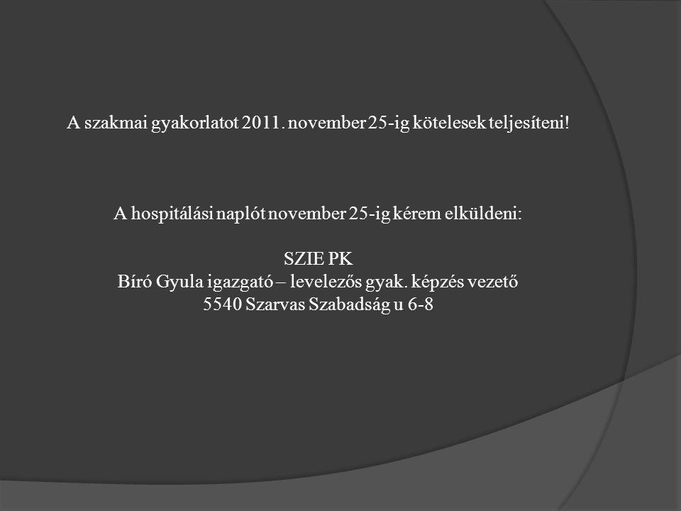 A szakmai gyakorlatot 2011. november 25-ig kötelesek teljesíteni