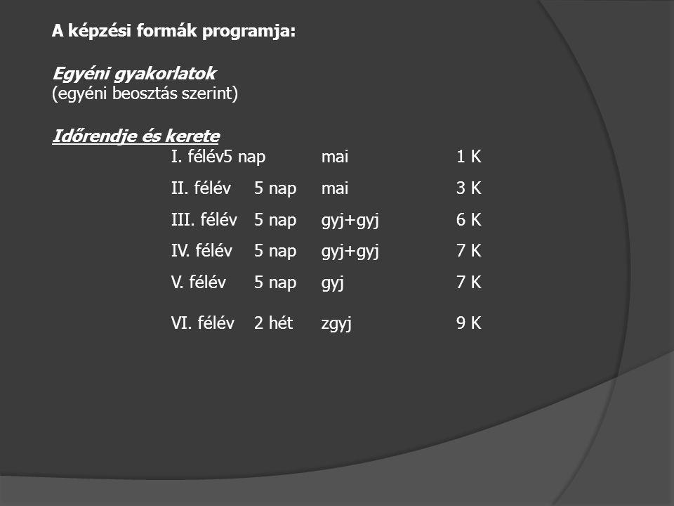 A képzési formák programja: