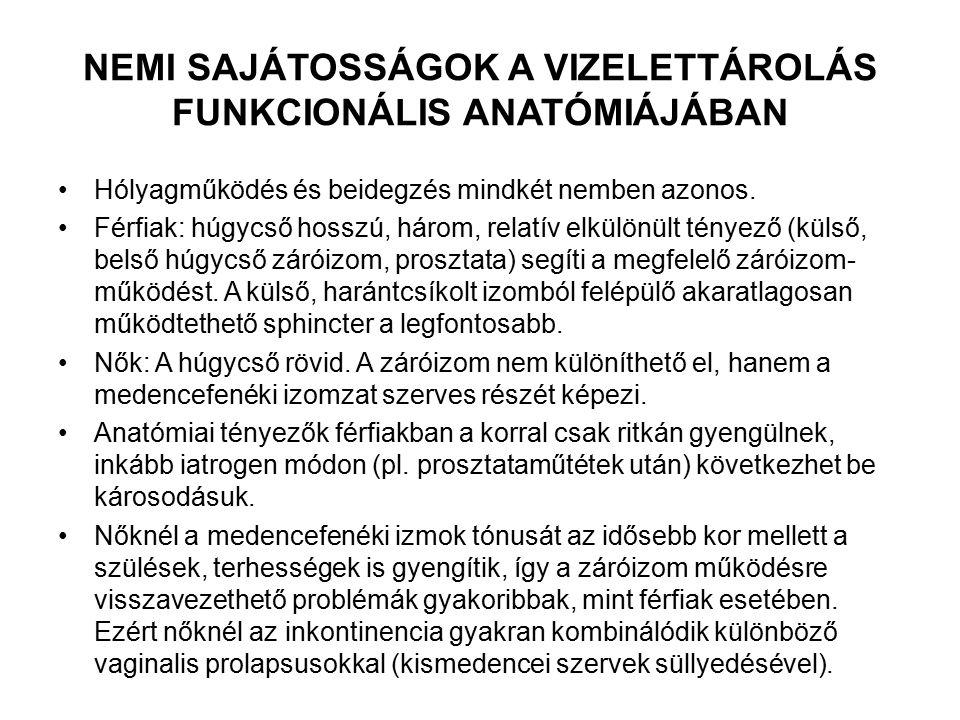 NEMI SAJÁTOSSÁGOK A VIZELETTÁROLÁS FUNKCIONÁLIS ANATÓMIÁJÁBAN