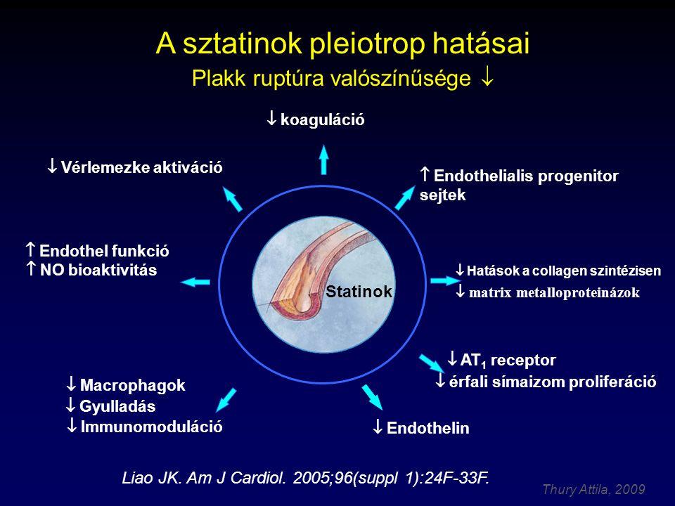 A sztatinok pleiotrop hatásai Plakk ruptúra valószínűsége 