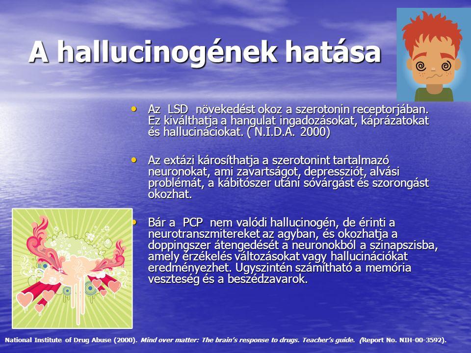 A hallucinogének hatása