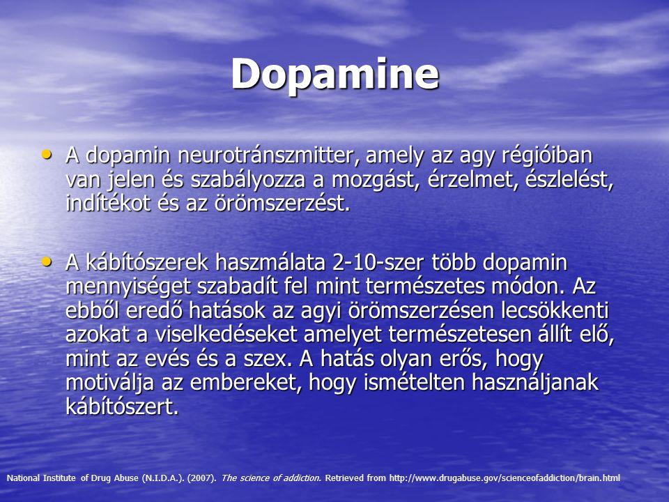 Dopamine A dopamin neurotránszmitter, amely az agy régióiban van jelen és szabályozza a mozgást, érzelmet, észlelést, indítékot és az örömszerzést.