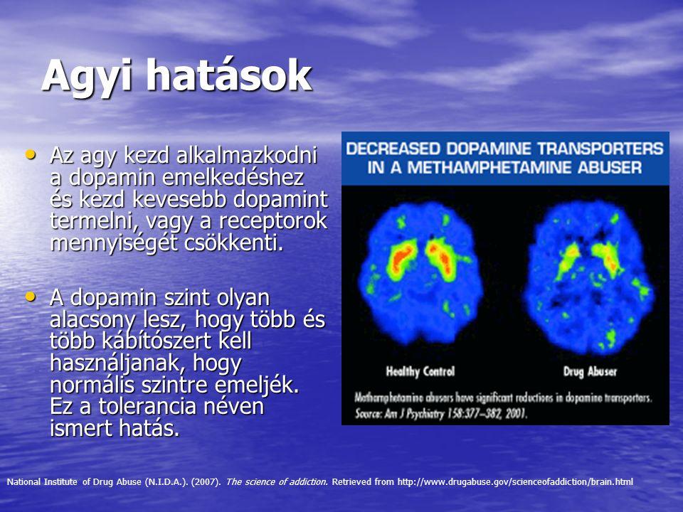 Agyi hatások Az agy kezd alkalmazkodni a dopamin emelkedéshez és kezd kevesebb dopamint termelni, vagy a receptorok mennyiségét csökkenti.