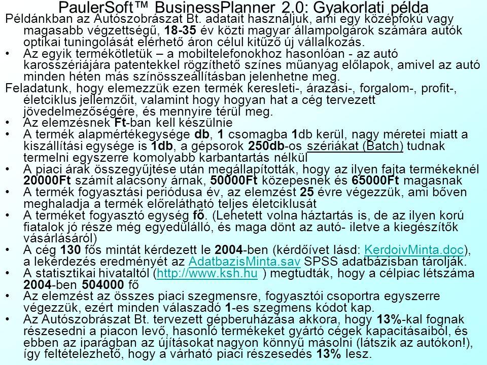 PaulerSoft™ BusinessPlanner 2.0: Gyakorlati példa