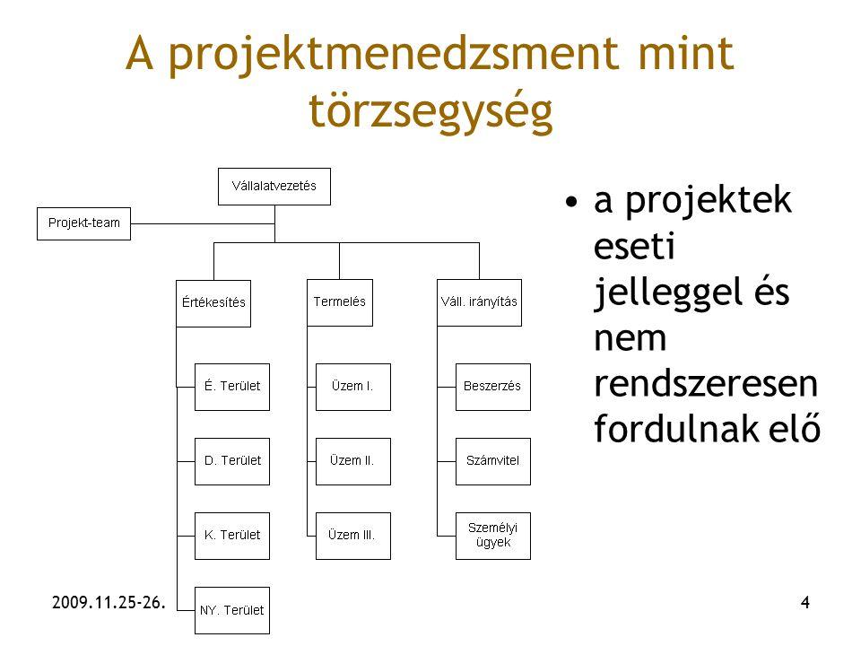 A projektmenedzsment mint törzsegység