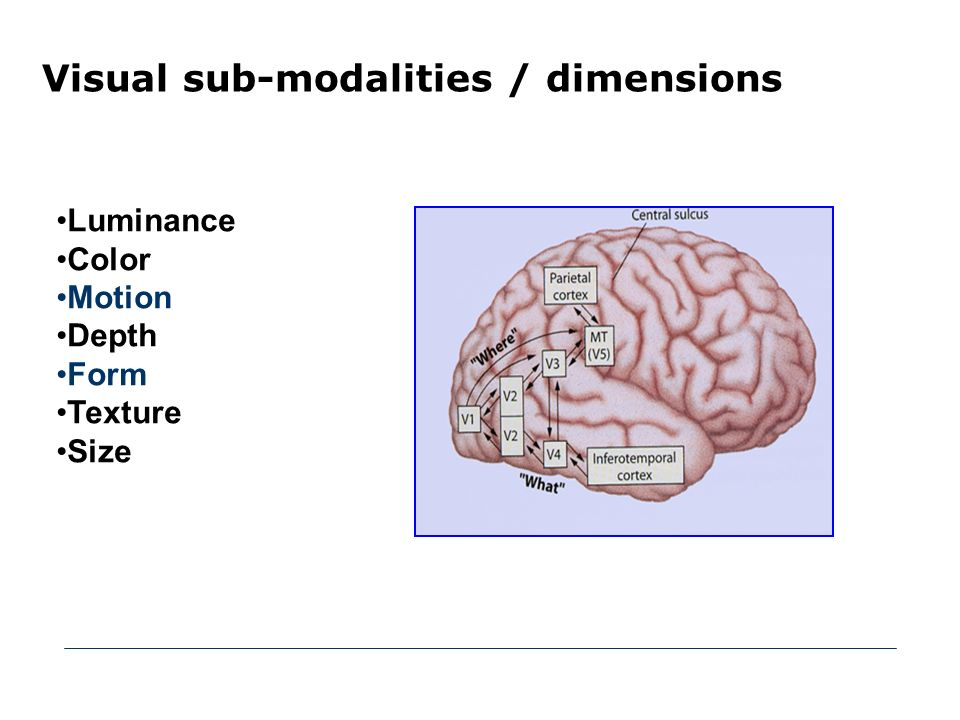 Visual sub-modalities / dimensions