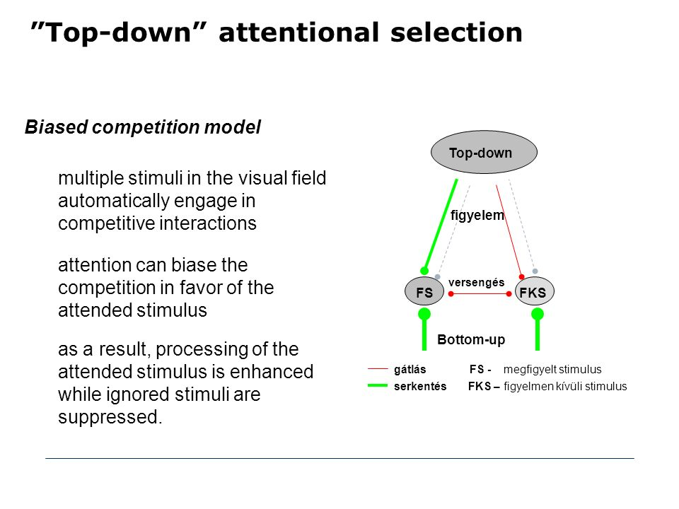 Top-down attentional selection