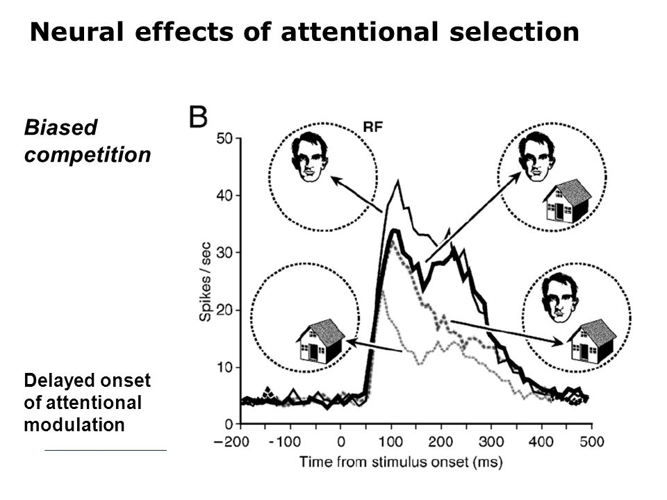 Neural effects of attentional selection