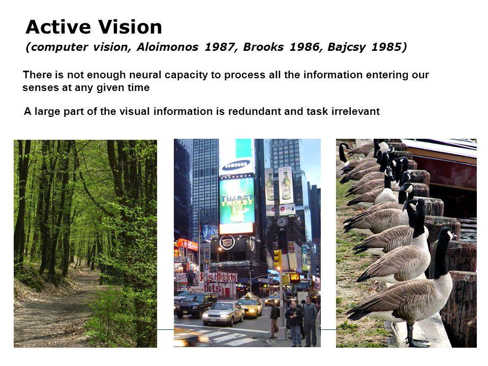 Active Vision (computer vision, Aloimonos 1987, Brooks 1986, Bajcsy 1985)