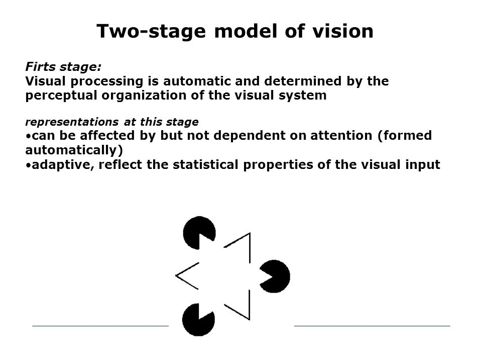 Two-stage model of vision