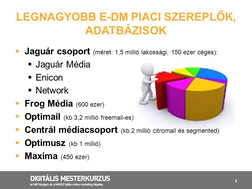 LEGNAGYOBB E-DM PIACI SZEREPLŐK, ADATBÁZISOK