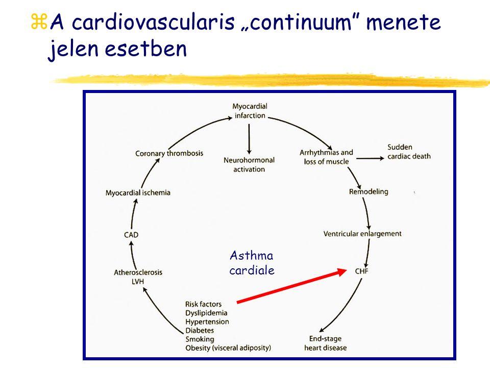 "A cardiovascularis ""continuum menete jelen esetben"