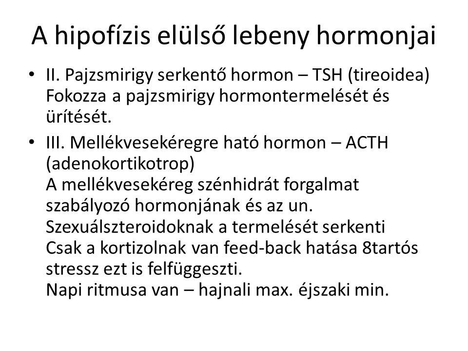 A hipofízis elülső lebeny hormonjai