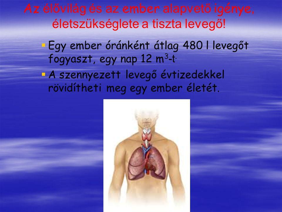 Az élővilág és az ember alapvető igénye, életszükséglete a tiszta levegő!