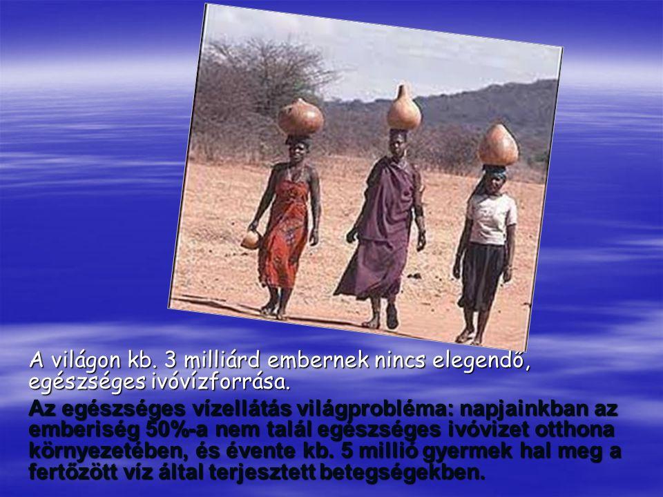 A világon kb. 3 milliárd embernek nincs elegendő, egészséges ivóvízforrása.