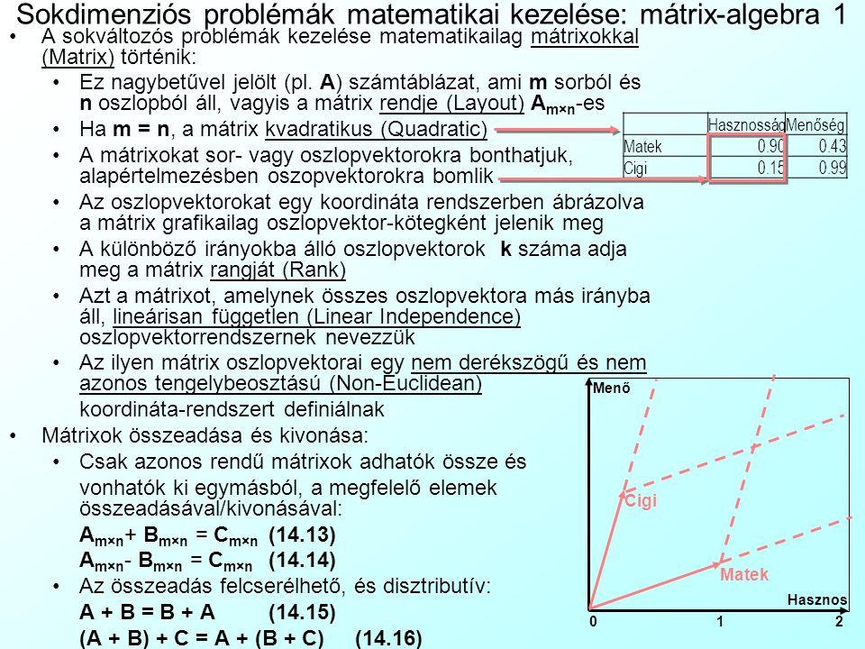Sokdimenziós problémák matematikai kezelése: mátrix-algebra 1