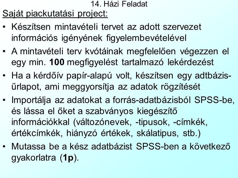 Saját piackutatási project: