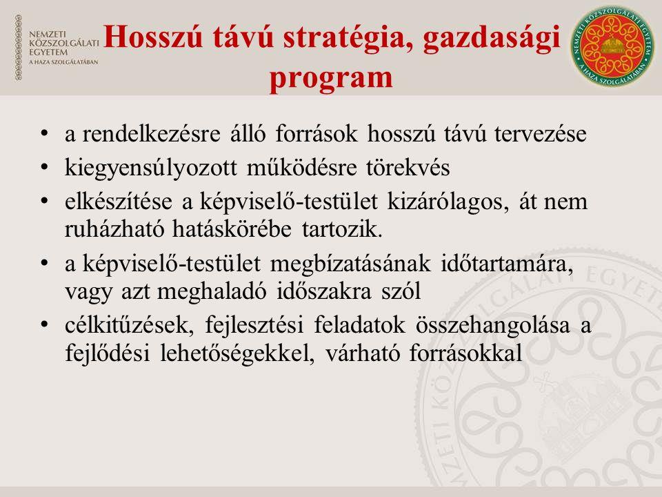 Hosszú távú stratégia, gazdasági program