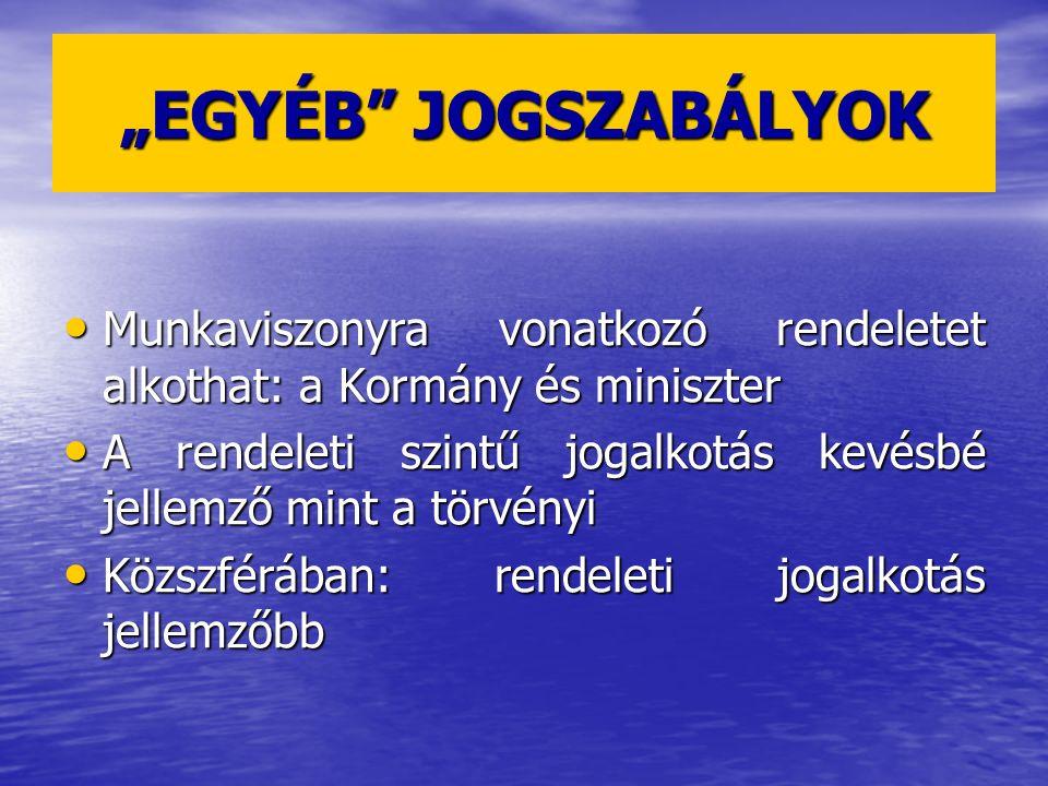 """""""EGYÉB JOGSZABÁLYOK Munkaviszonyra vonatkozó rendeletet alkothat: a Kormány és miniszter."""