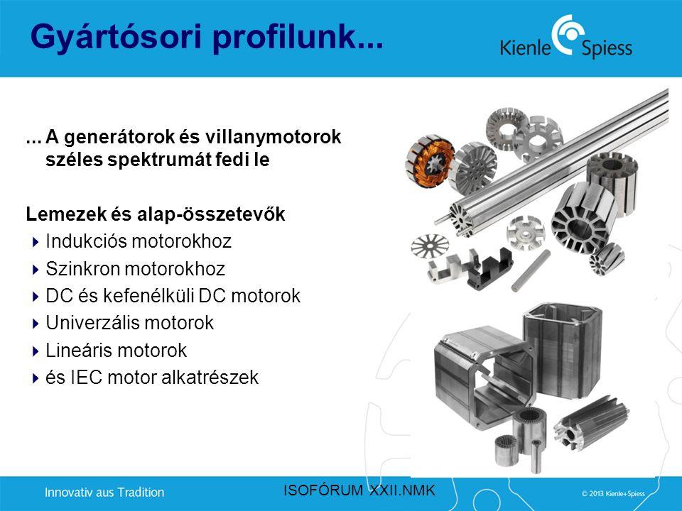 Gyártósori profilunk... ... A generátorok és villanymotorok széles spektrumát fedi le. Lemezek és alap-összetevők.