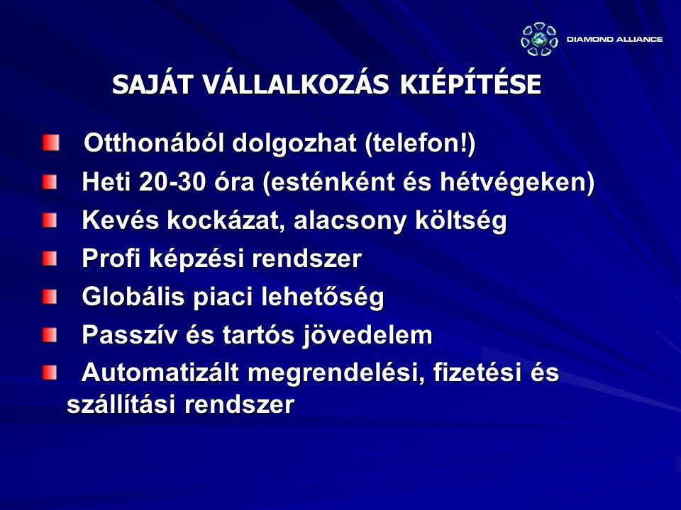 SAJÁT VÁLLALKOZÁS KIÉPÍTÉSE