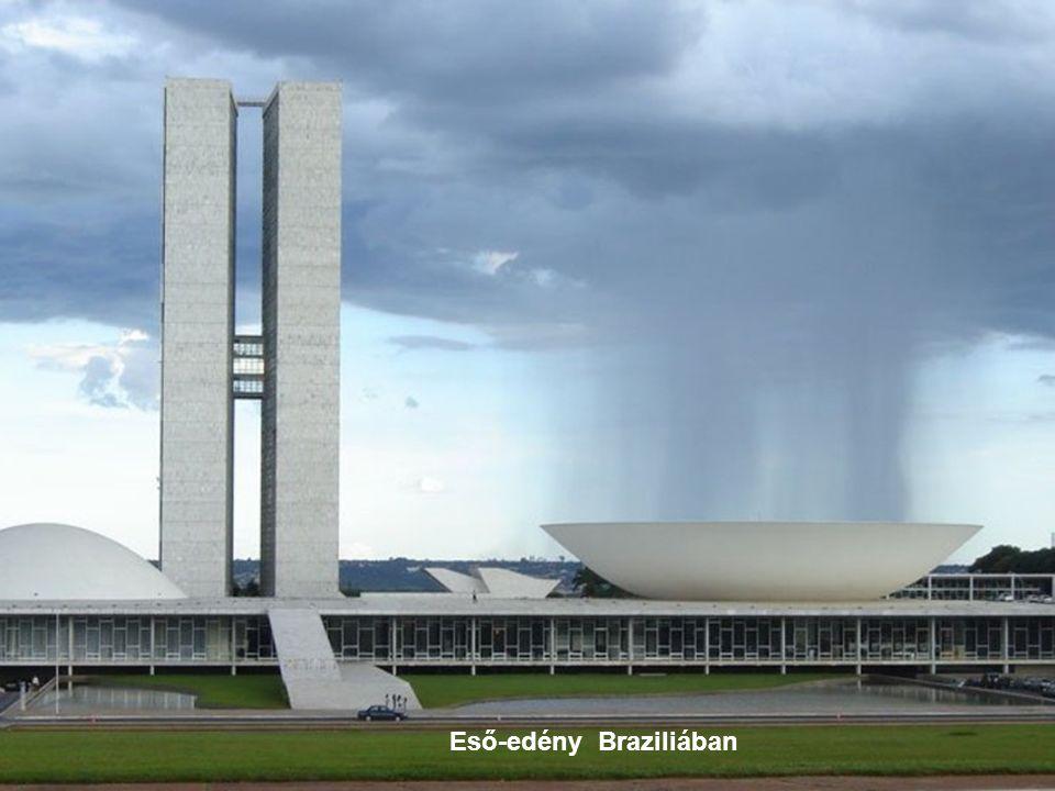 Eső-edény Braziliában