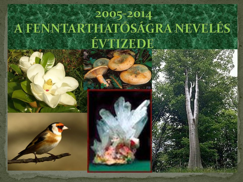 2005-2014 A FENNTARTHATÓSÁGRA NEVELÉS ÉVTIZEDE