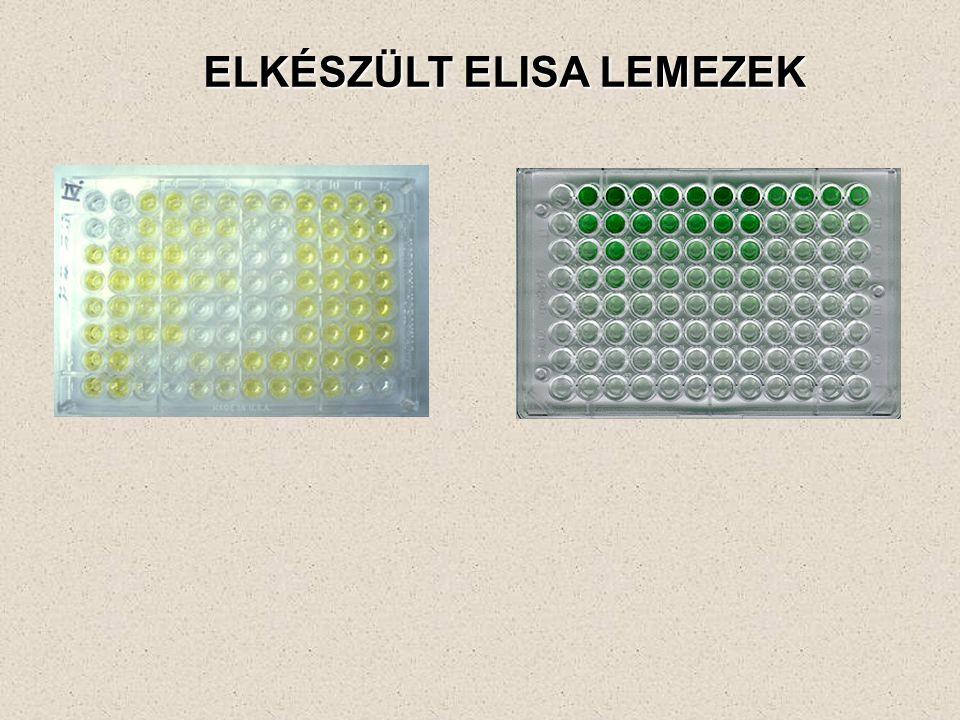 ELKÉSZÜLT ELISA LEMEZEK