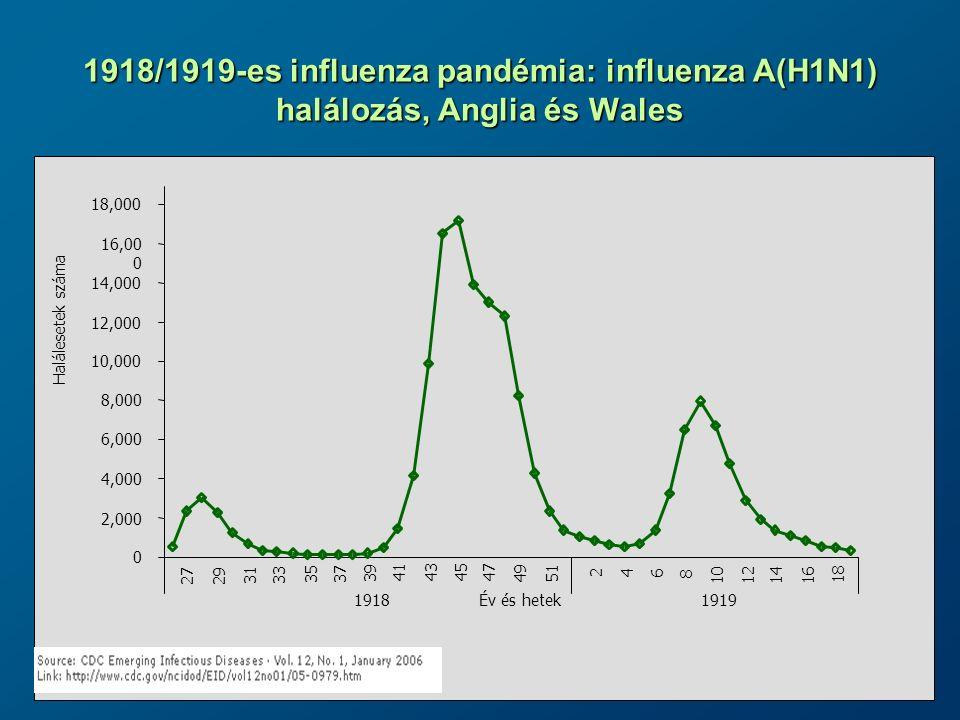 1918/1919-es influenza pandémia: influenza A(H1N1) halálozás, Anglia és Wales