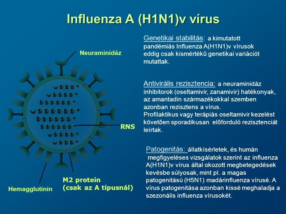 Influenza A (H1N1)v vírus