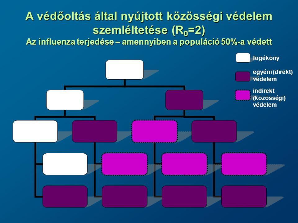A védőoltás által nyújtott közösségi védelem szemléltetése (R0=2) Az influenza terjedése – amennyiben a populáció 50%-a védett