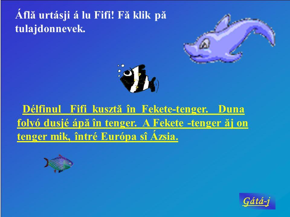 Áflă urtásji á lu Fifi! Fă klik pă tulajdonnevek.