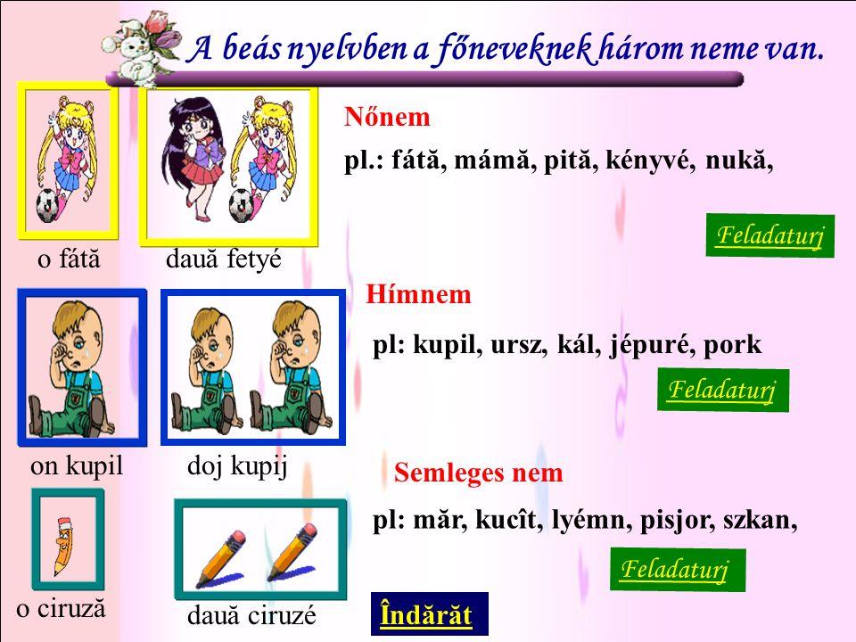 A beás nyelvben a főneveknek három neme van.