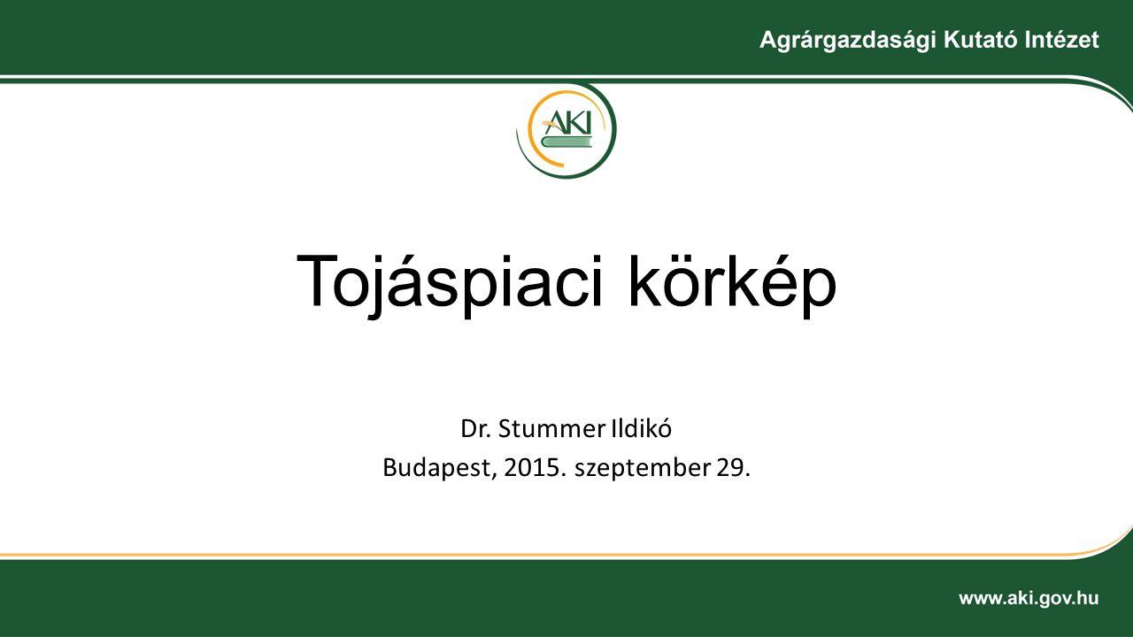 Dr. Stummer Ildikó Budapest, 2015. szeptember 29.