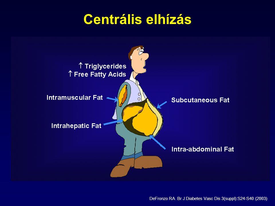 Centrális elhízás