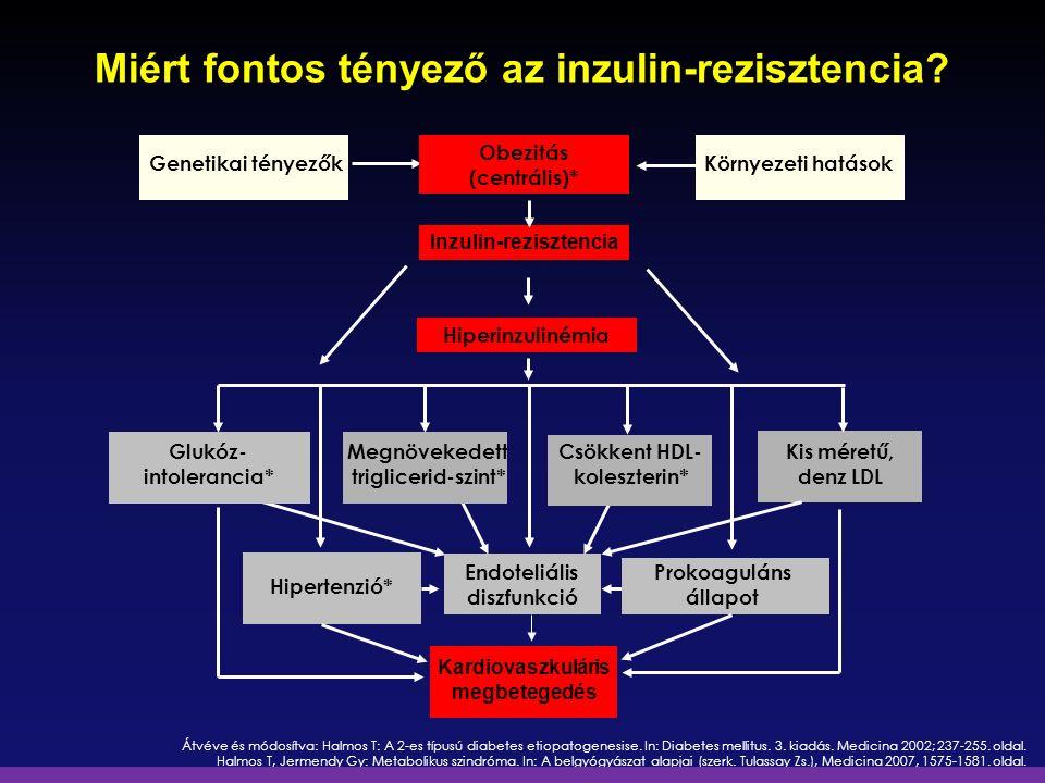 Miért fontos tényező az inzulin-rezisztencia