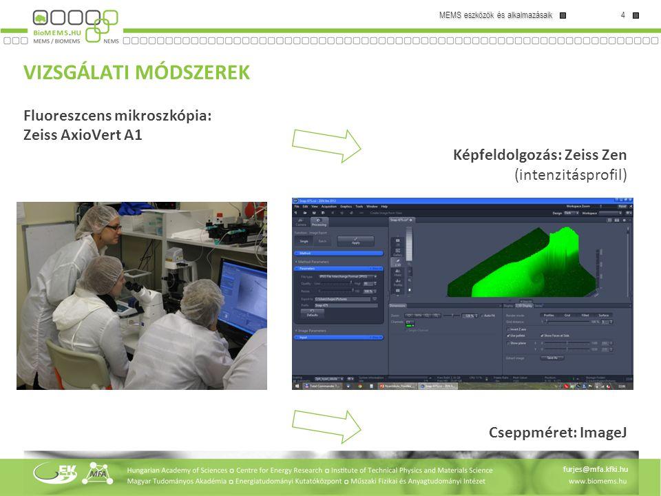 VIZSGÁLATI MÓDSZEREK Fluoreszcens mikroszkópia: Zeiss AxioVert A1