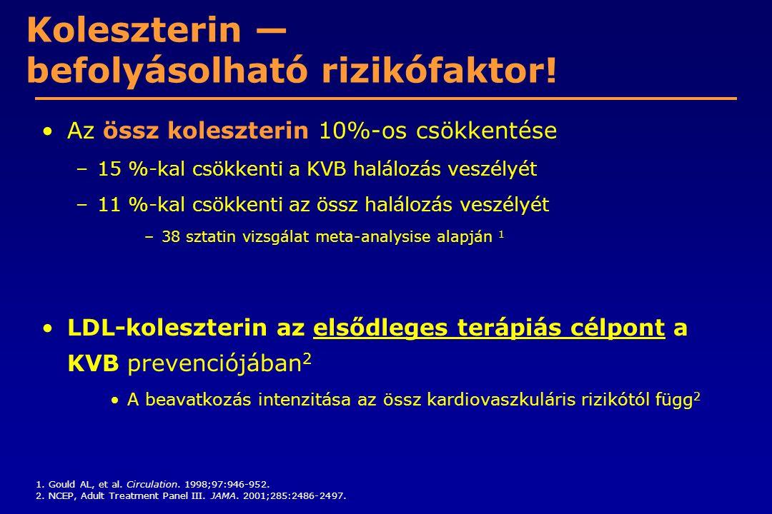 Koleszterin — befolyásolható rizikófaktor!