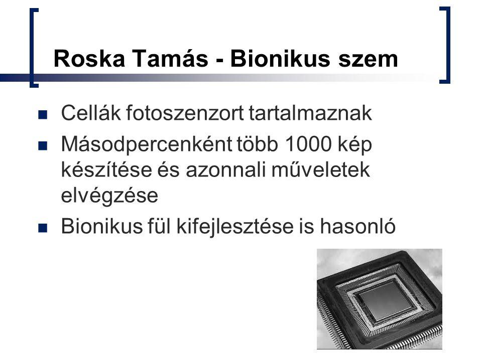 Roska Tamás - Bionikus szem