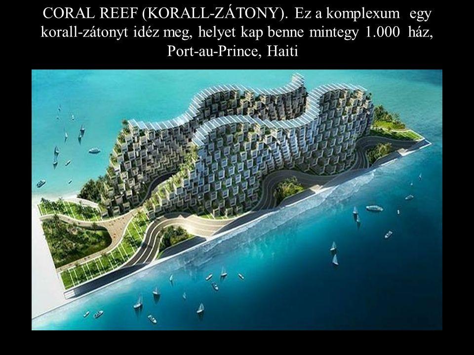 CORAL REEF (KORALL-ZÁTONY)
