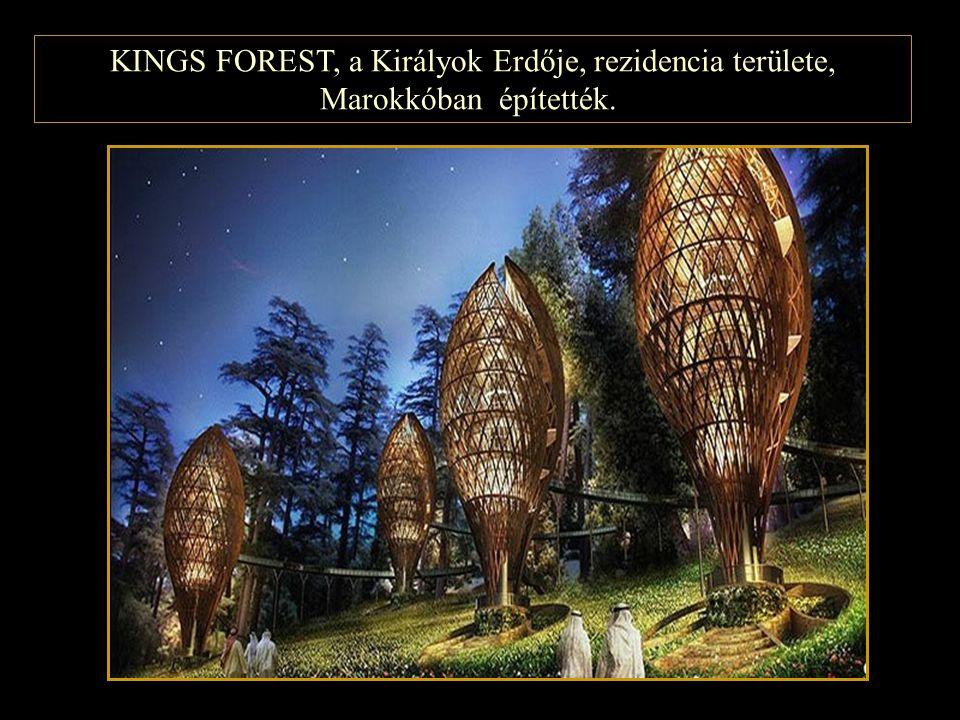 KINGS FOREST, a Királyok Erdője, rezidencia területe, Marokkóban építették.