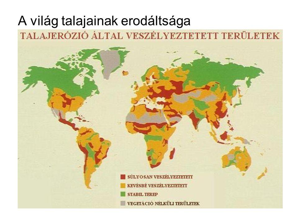 A világ talajainak erodáltsága