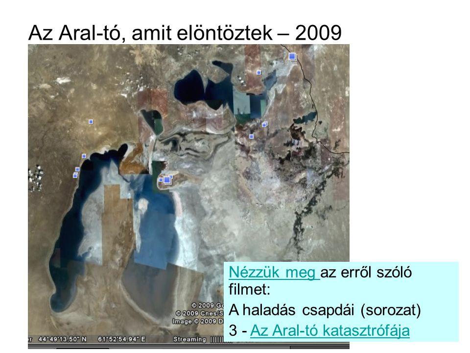 Az Aral-tó, amit elöntöztek – 2009
