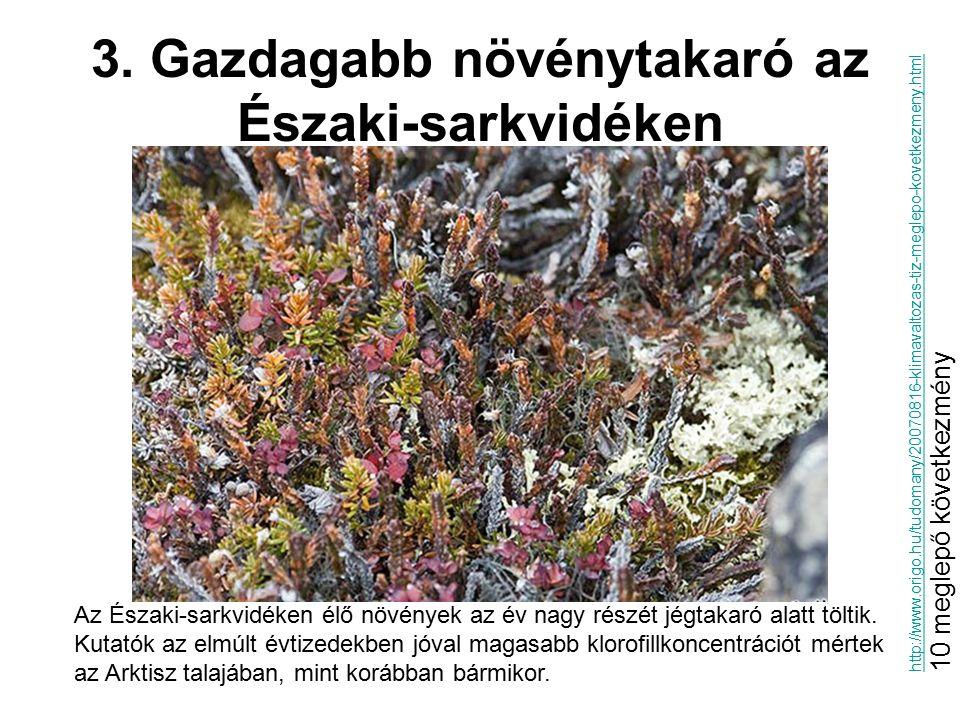 3. Gazdagabb növénytakaró az Északi-sarkvidéken